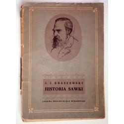 JÓZEF IGNACY KRASZEWSKI HISTORIA SAWKI